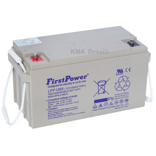 BATERIA SELADA 12V 65AH FIRST POWER LFP1265